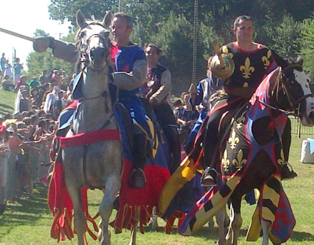 chevaliers en costumes