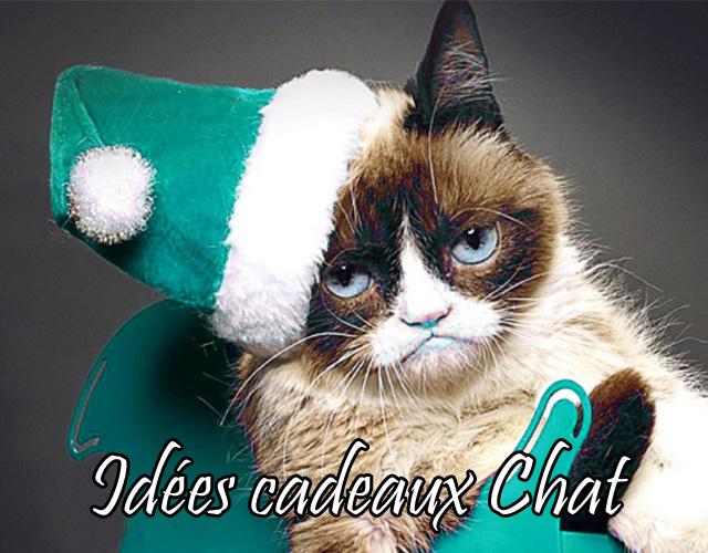 Cher Papachat de Noël, Cette année, j'ai été très sage...